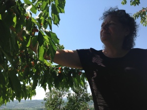 "Jay enjoying fresh cherries from relative's ""farm"""