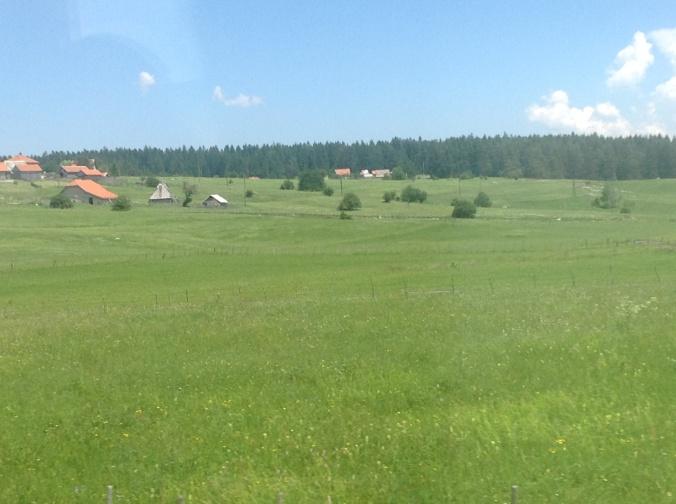 Dairy meadows of Bosnia