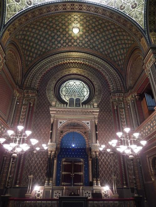 Spanish synaggoe