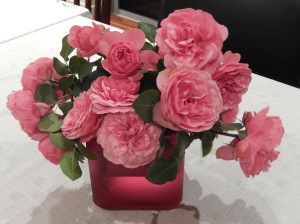 Leonardo Da Vinci rose from Ida's garden