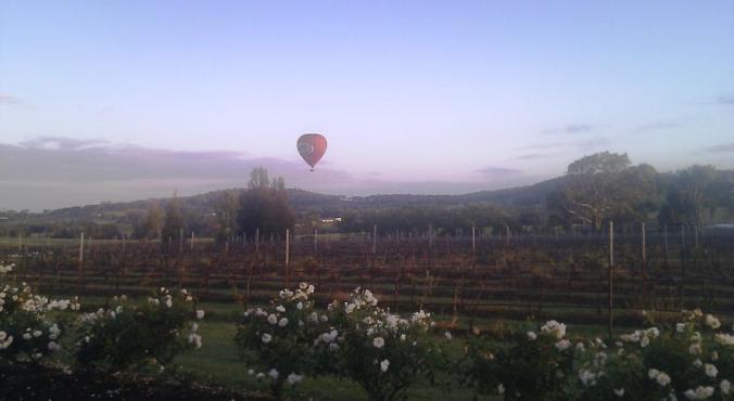 Balloon Aloft Bluebush Estate Lovedale