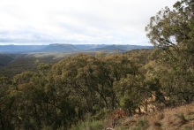 At the Lookout to Capertee Gorge near Ilford (1)