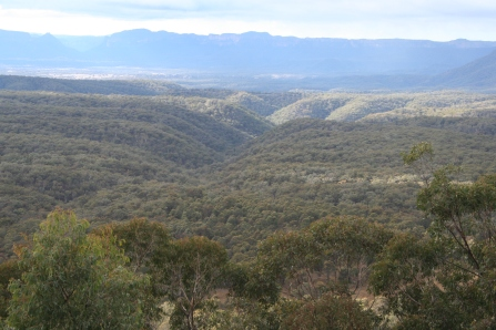 At the Lookout to Capertee Gorge near Ilford (5)