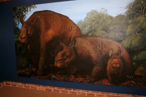 Giant Prehistoric Wombat at Coonabarabran Tourist Info Office (4)