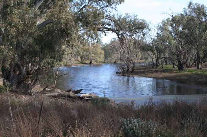 Nyah area, near Swan Hill