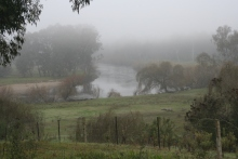 10am and the mist outside Corryong is still to lift