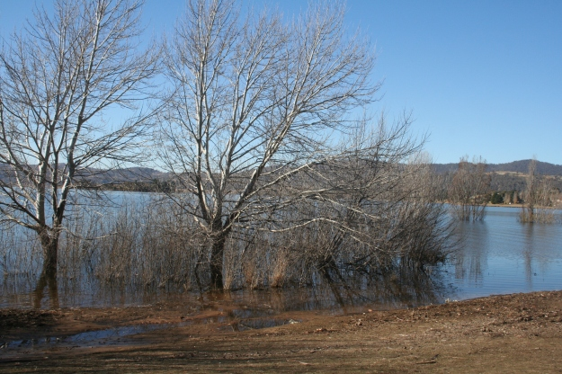 A glimpse of Lake Jindabyne in late autumn