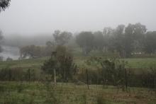 Mysteriously Misty