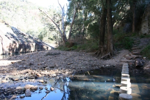 Wambelong Nature Trail, Warrumbungle Ranges (14)