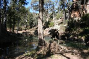 Wambelong Nature Trail, Warrumbungle Ranges (41)