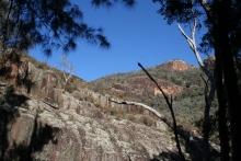 Wambelong Nature Trail, Warrumbungle Ranges (9)