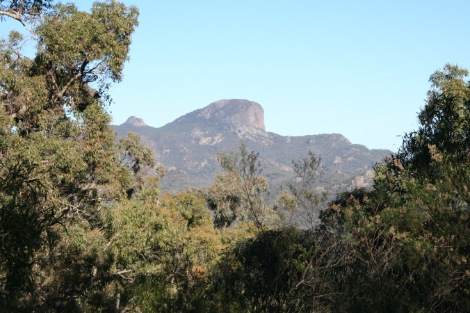 Whitegum Lookout Walk Warrumbungle Ranges (25)