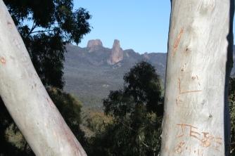 Whitegum Lookout Walk Warrumbungle Ranges (37)