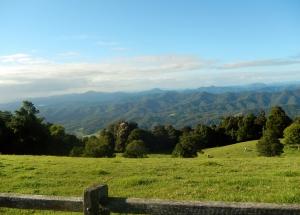 Mountain Top Dorrigo early morning