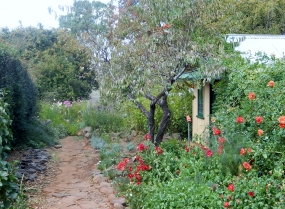 Mary's Garden in Saumarez House Armidale