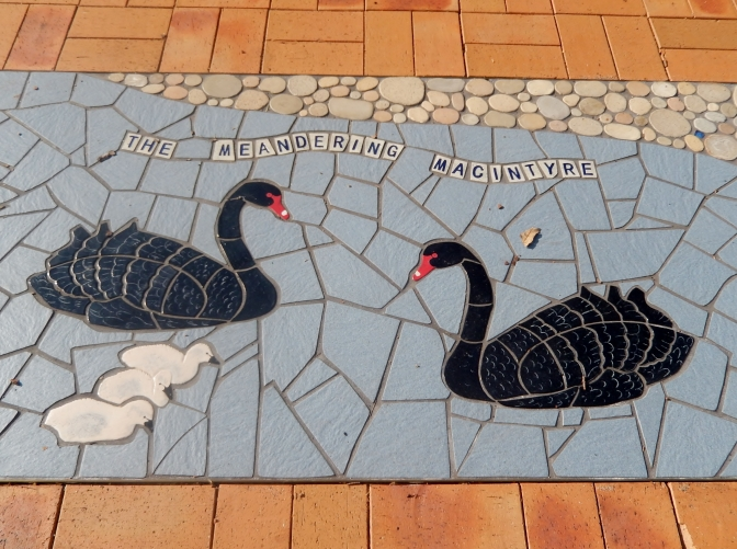Meandering Macintyre Inverell footpath mosaic (23)