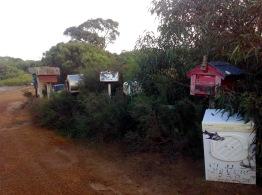 Letter Boxes, Kangaroo Point, June 2016