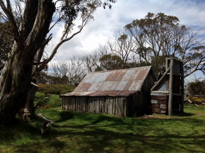 wallaces-cattlemans-hut-near-omeo-vic-2016-12-15-7-1024x765-800x598