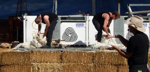 RAS Sheep Shearing (2) (640x309)