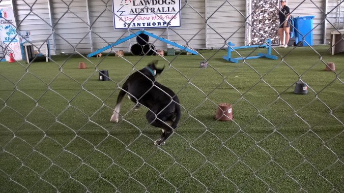 Lawdogs Australia Stanthorpe 13th March 2019 (8)