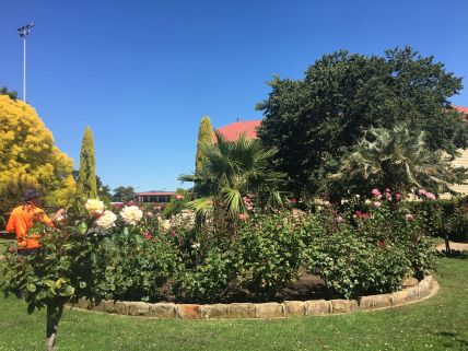 Gardener at Stawell rs