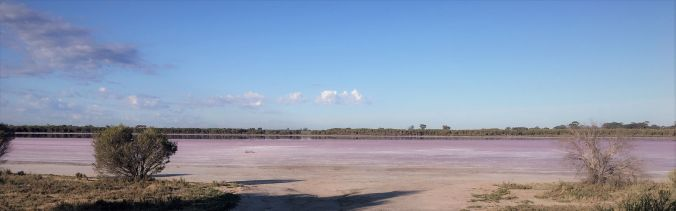 pink lake Dimboola rs