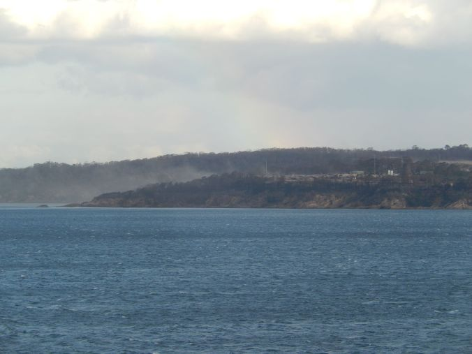 Looking across to Eden woodchip mill