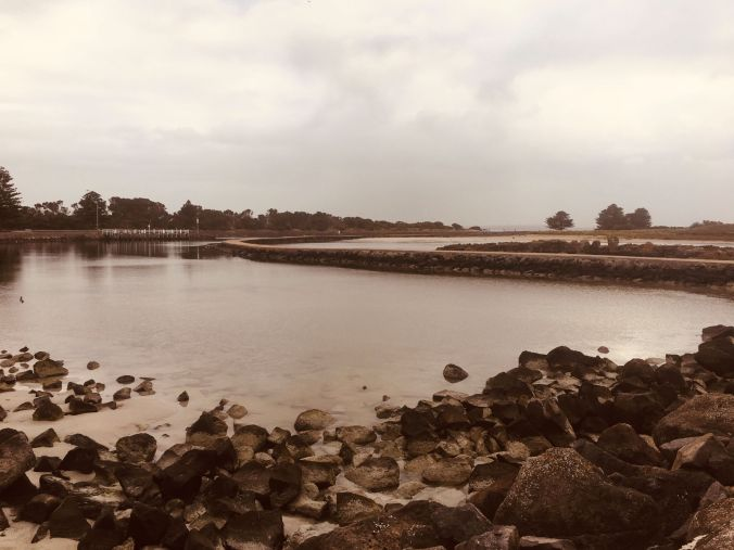 rs Griffiths Island Port Fairy filtered