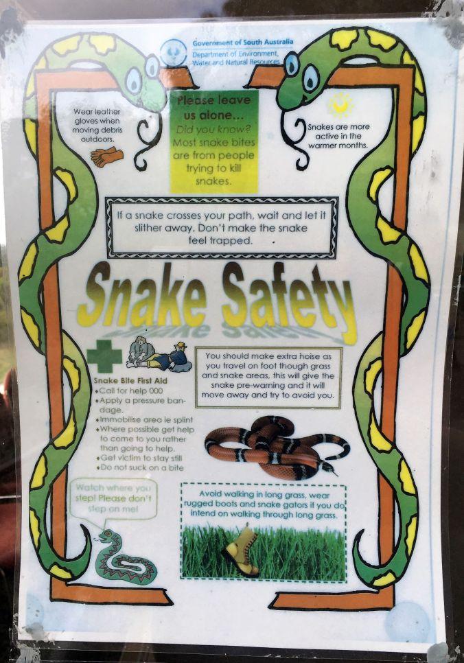 rs Snake Warning at Tantanoola Caves