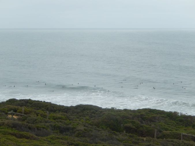 surfers waiting to catch a wave